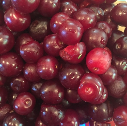 The salvaged sour cherries.
